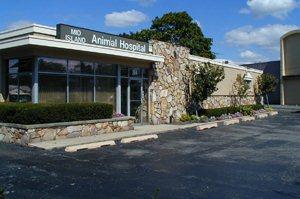 Mid Island Animal Hospital - Our Doctors
